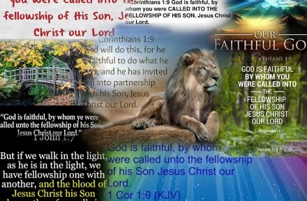 The fellowship of his Son Jesus Christ